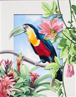 Toucan with Passion Flower