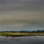 Lowlands Series - Coal River Wetlands (797)