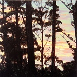 Through the Trees - Sunrise 2.