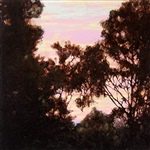 Through the Trees  - Sunset 4.
